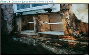 Damage due to moisture inside a wall